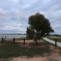 Lake Boga walking/bike track along the foreshore